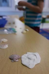 shellprint