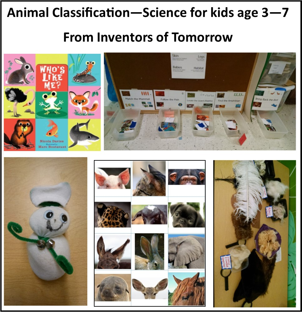 essay about classification of animals 2018-7-9 reconciling traditional classification and new understanding the many changes in our understanding of evolutionary relationships among animals have resulted in.