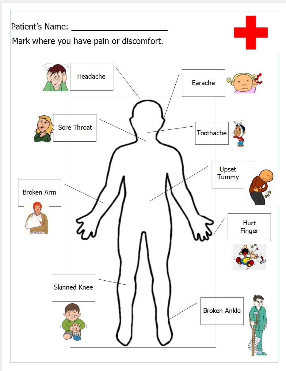 The Human Body Anatomy For Kids Inventors Of Tomorrow