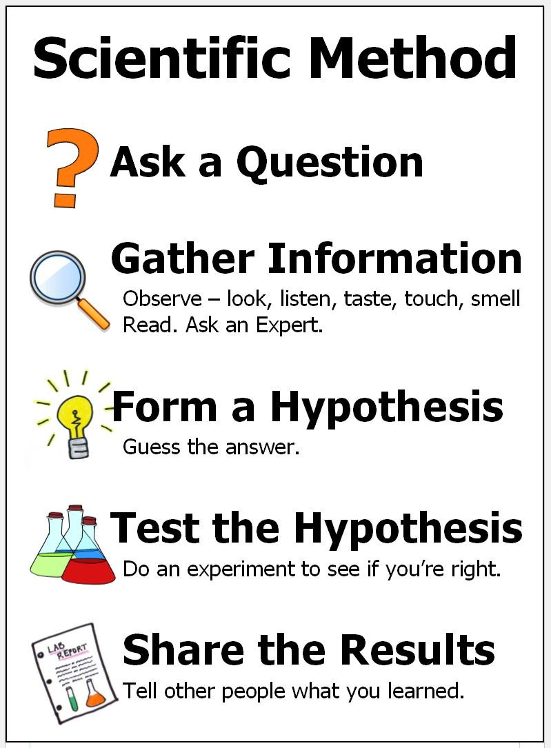 scientific method for kids poster