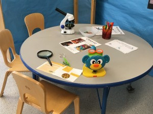 photo of classroom set-up for kids to test microscopes