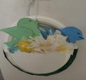 cym bird nest